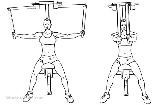 разная амплитуда упражнения