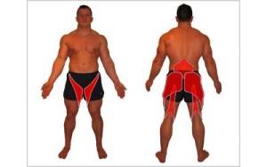 Работа не только бицепса бедра и ягодицы, но и мышц спины