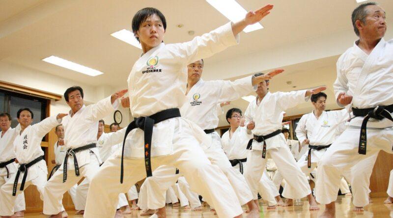 боевых искусств для здоровья